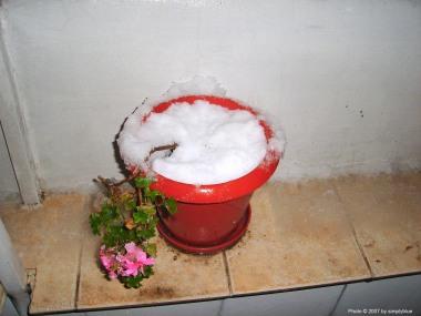 1-ви сняг